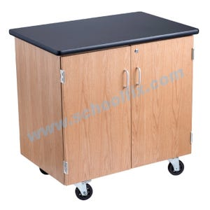 Science Lab Mobile Cabinet or Cart - 2 Lockable Doors with Internal Shelf Part No. LC24